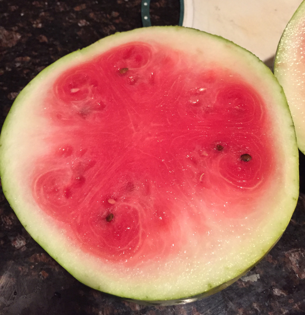 The cut watermelon, not quite ripe apparently